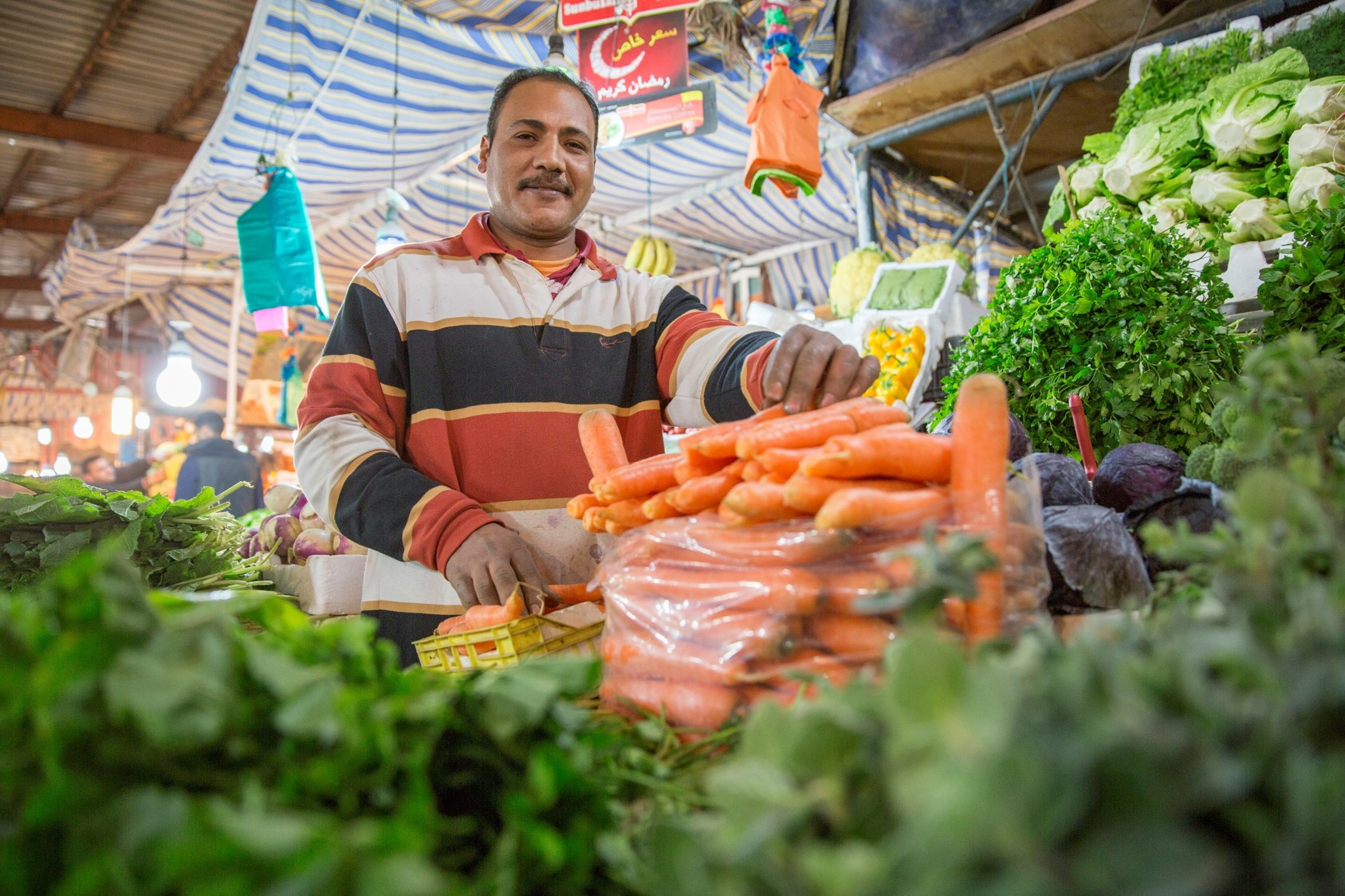Safeguarding the availability of fresh fruit and vegetables in the Middle East and North Africa