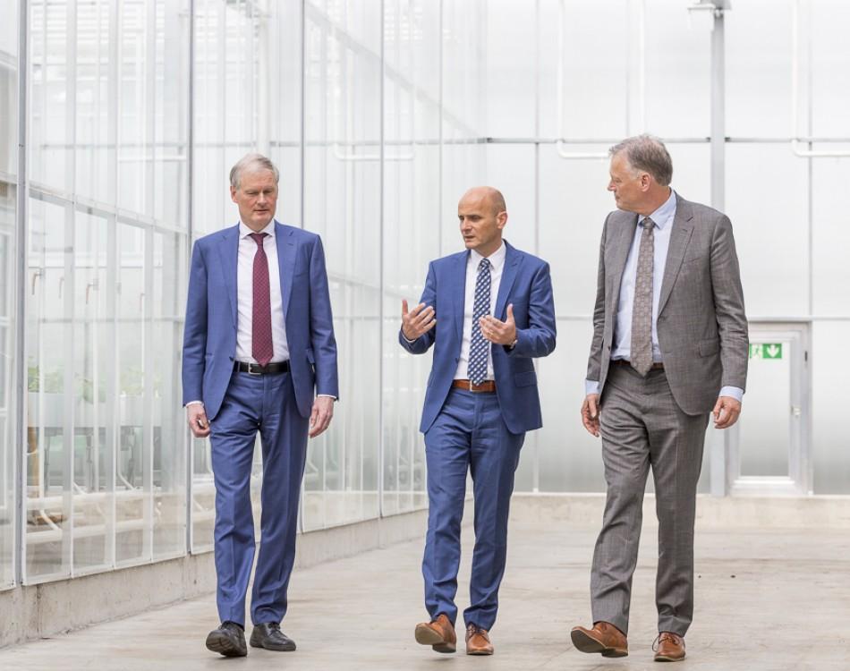 Rijk Zwaan global management
